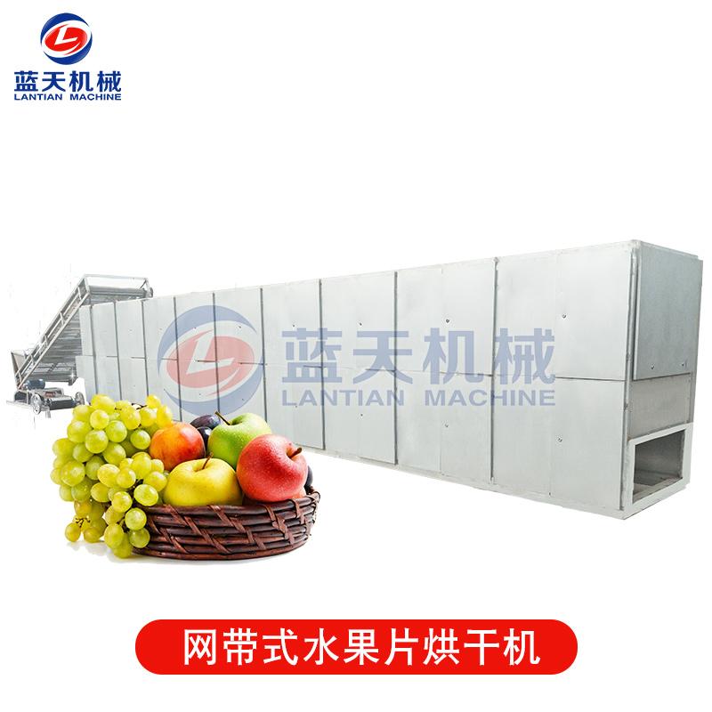 网带式水果片烘干机